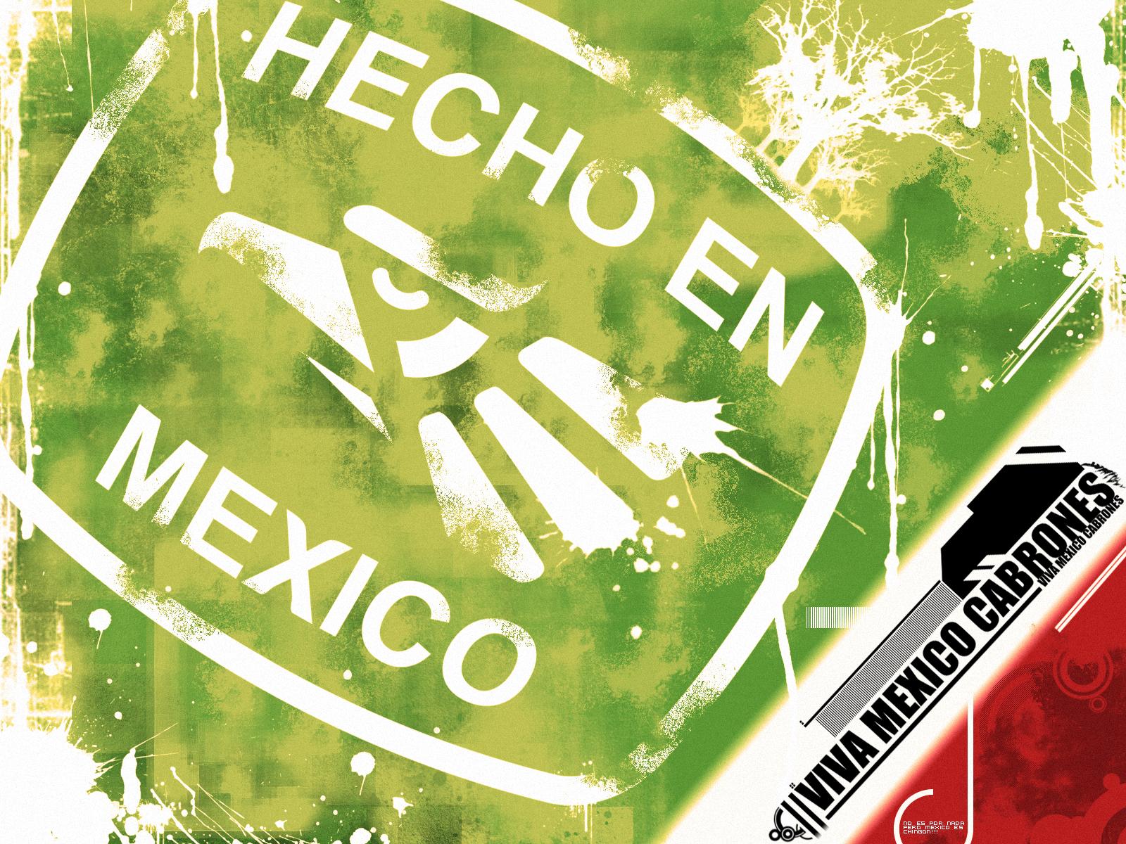 Viva Mexico Restaurant Langley Bc